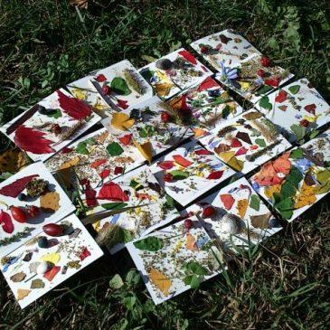Défi n°3 : La palette de couleur du printemps