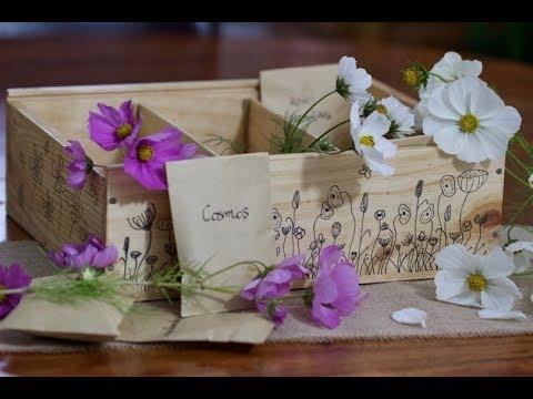 Concours : boîtes à graines