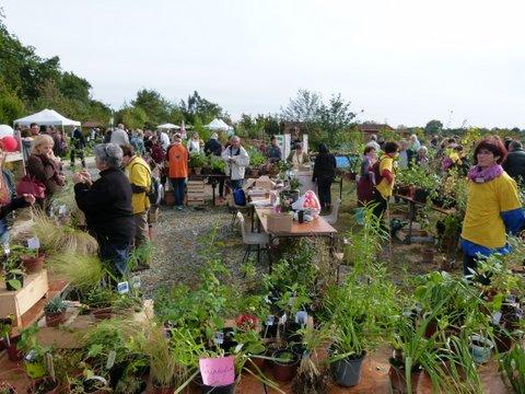 Vide jardin à Tournefeuille